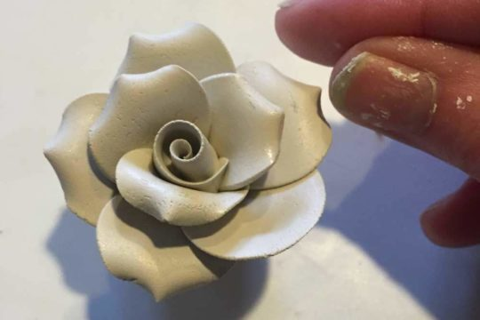 bone china rose flower