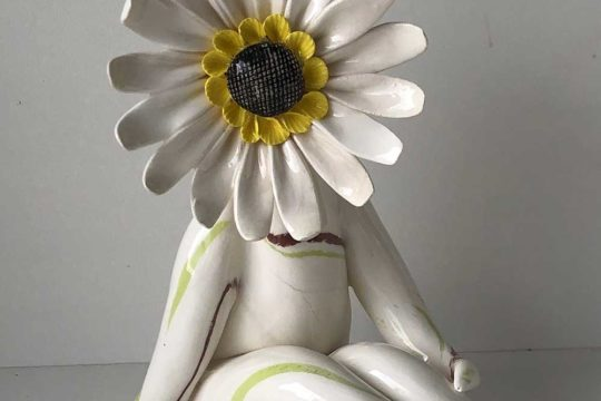 Mrs Gerbera Flower Gift